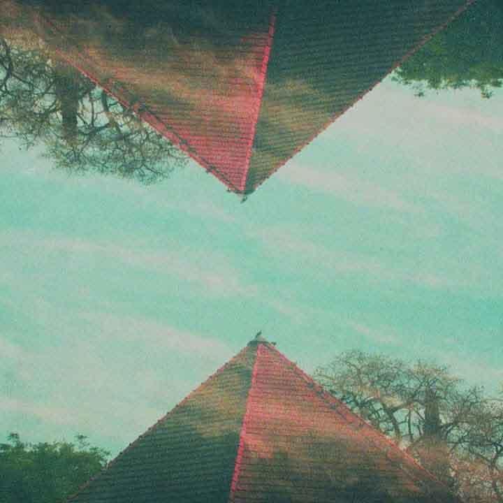 cabeza_de_saturno_bosque_digital